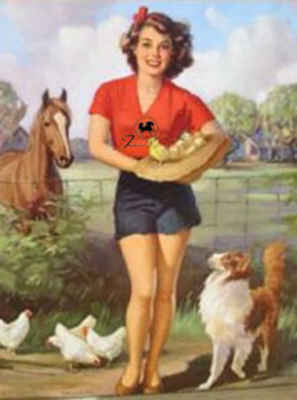 Farmgirlposter4