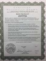 Cng_certificate