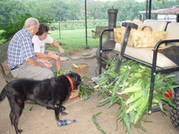 Shucking_corn_7-15-07