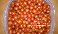 Cherry_tomatoes_for_alg