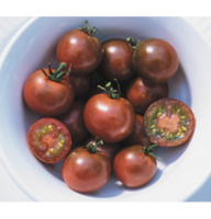 Chocolate_cherry_tomato